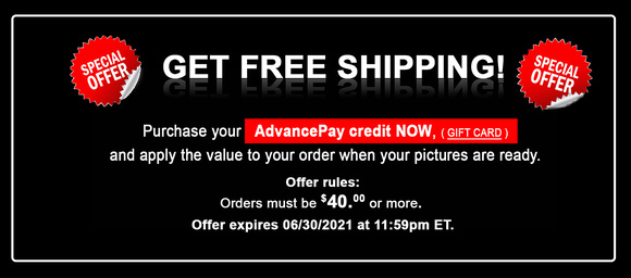 FREE SHIPPING Outline